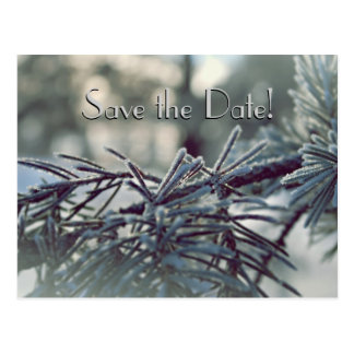 Winter Wonderland Save the Date Postcard
