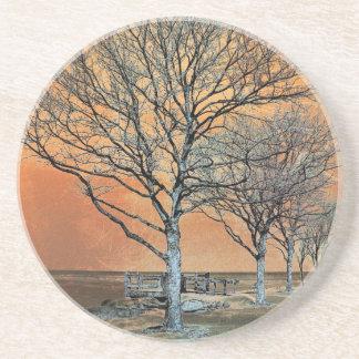 Winter's Dawn Coaster