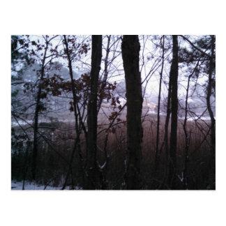 Winter's Mist. Postcard