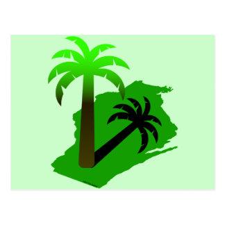 Wisconsin Palm Tree Postcard