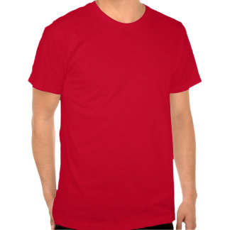 wish and blessing Chinese calligraphy of tradition Tee Shirts