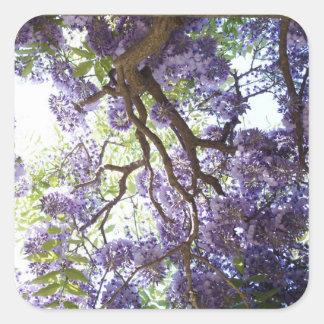 Wisteria Purple Flower Floral Square Stickers