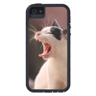 Wonderful Dangerous Cat Case For The iPhone 5