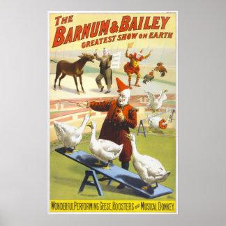 Wonderful Performing Geese, Roosters & Musical Don Print