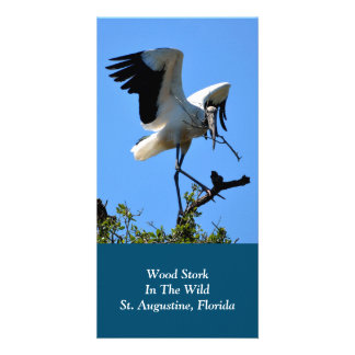 Wood Stork in The Wild Personalized Photo Card