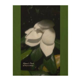 Wood Wall Art (Magnolia) Wood Prints