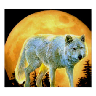 woodland forest moonlight full moon wolf poster