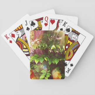 Woodland Mystics in Boothay Maine Playing Cards