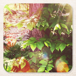 Woodland Mystics in Boothbay Square Coasters