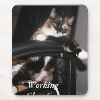 Working Class Cat Mouse Pad