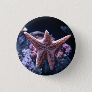 Wounded Starfish Button