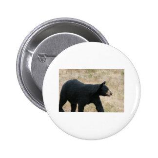 www blackbearsite com pinback button