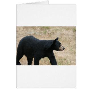 www blackbearsite com card