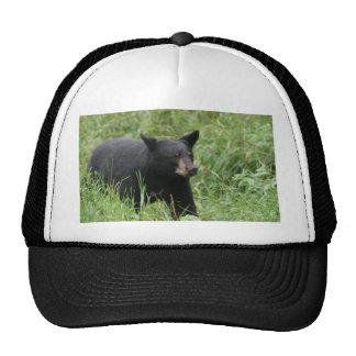 www blackbearsite com trucker hats