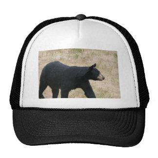 www blackbearsite com mesh hat