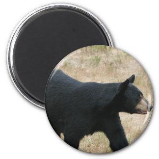 www blackbearsite com fridge magnets