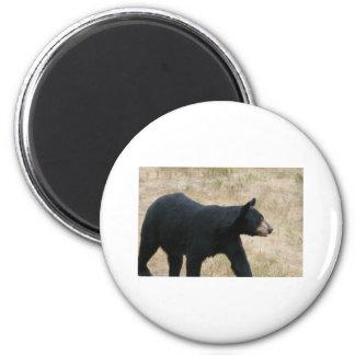 www blackbearsite com magnets