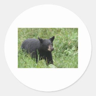 www blackbearsite com round stickers