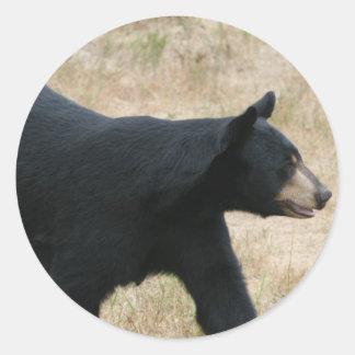 www blackbearsite com round sticker