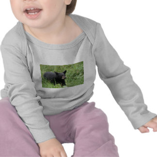 www blackbearsite com t-shirt