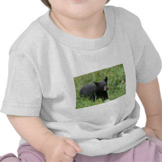 www blackbearsite com tee shirts