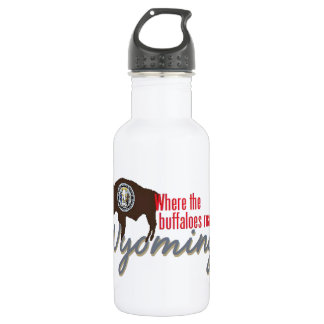 WYOMING 532 ML WATER BOTTLE