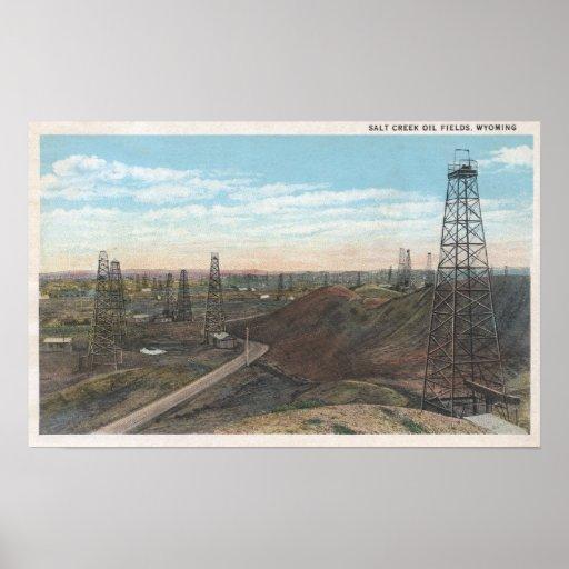 Wyoming Salt Creek Old Fields SceneWyoming Posters