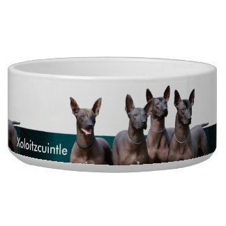 Xoloitzcuintle Ceramic Pet Bowl