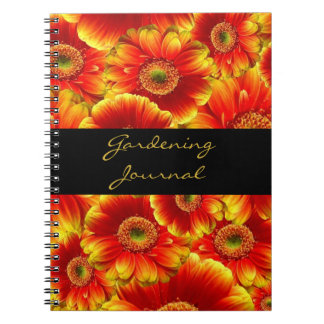Yellow and Orange Gerbera Daisies Spiral Note Books
