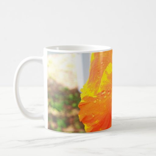 yellow-and-orange coffee mugs