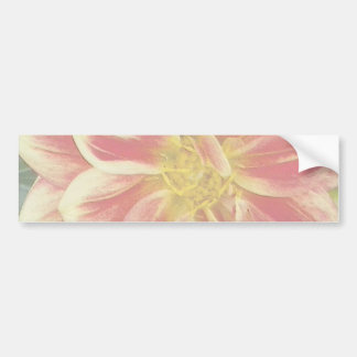 Yellow and Red Dahlia Bumper Sticker