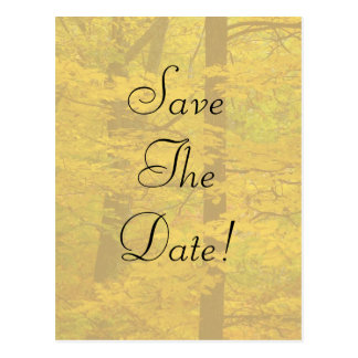 Yellow Autumn Forest Theme Wedding Save The Date Postcard