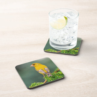 Yellow Bird on Branch Drink Coaster