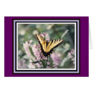 Yellow Butterfly Note Card