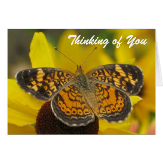 """Yellow Butterfly """"Thinking of You"""" Card"""
