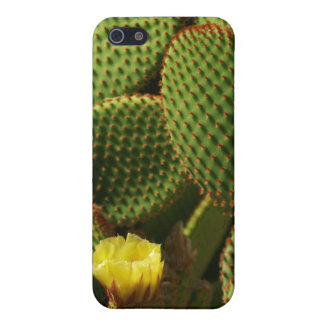 Yellow Cactus Cover iPhone 5 Cover