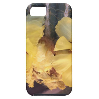 Yellow cactus flower iPhone 5 covers