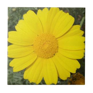 Yellow Daisy tile