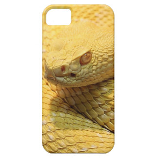 Yellow danger iPhone 5 cover