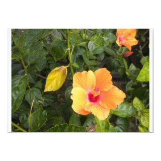 Yellow Flower  photo by Lorette Starr  Invitation