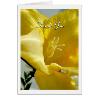 Yellow Freesia Thank You Card
