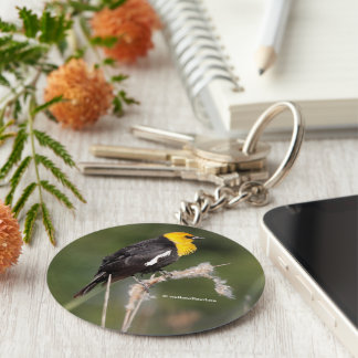Yellow-Headed Blackbird in the Marsh Key Ring