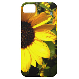 Yellow Heads iPhone 5 Case