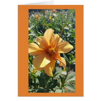 Yellow Honeybee Flower Card