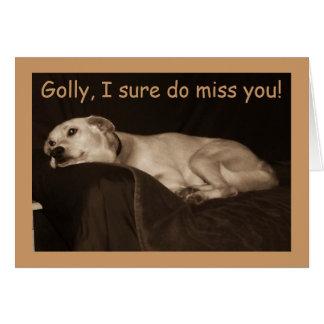 i miss you husky - photo #10