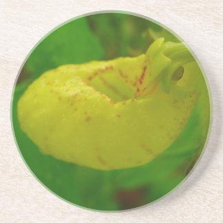 Yellow Lady Slipper Drink Coaster