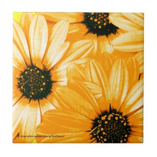 Yellow/Orange Daisies - Ceramic Tile