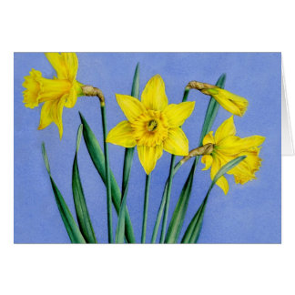 Yellow painted Daffodils art card