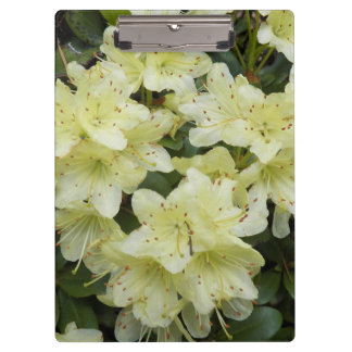 Yellow Rhododendrons Floral Clipboard