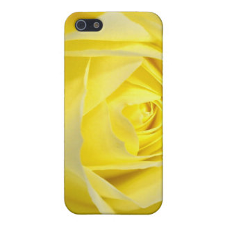 Yellow Rose Closeup iPhone 5 Cover